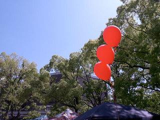20110119.jpg